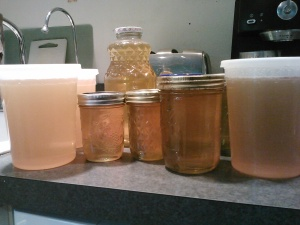 I'm still working on getting it all in jars - I harvested almost 48 pounds of honey!