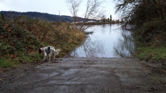 Farley found something as the water recedes.