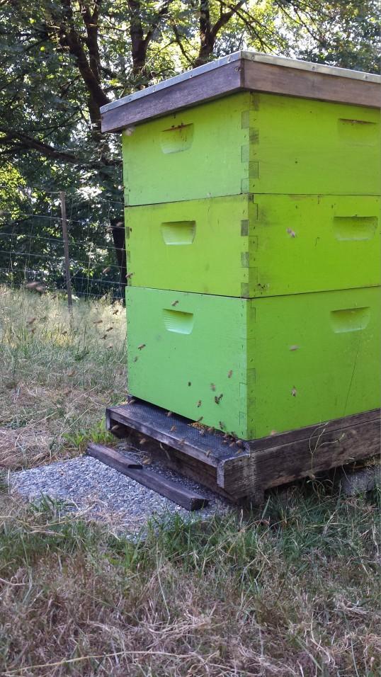 Happy hive.
