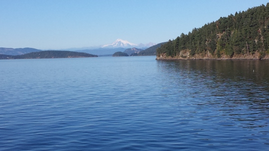 A recent day trip took me to the San Juan Islands.  This is Mount Baker seen from the ferry on the way home.
