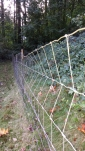 The fence he went over in the video link. Not too bad.
